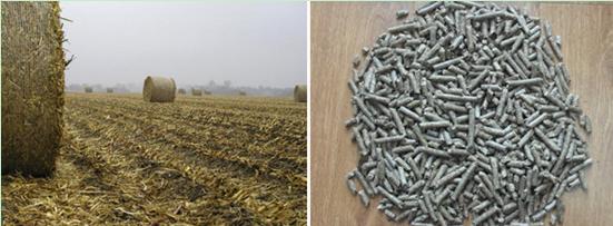 corn-stover-pellets