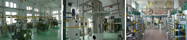 edible-oil-refining-plant