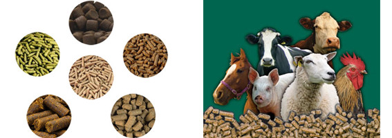 feed mill pellets