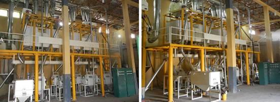 40TPD Wheat Flour Milling Plant Under Construction