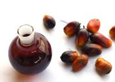 palm-kernel-and-oil