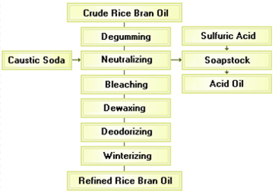 rice-bran-oil-processing-1