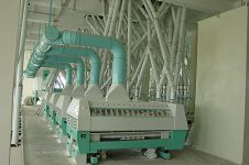 siftering system of flour mill equipment